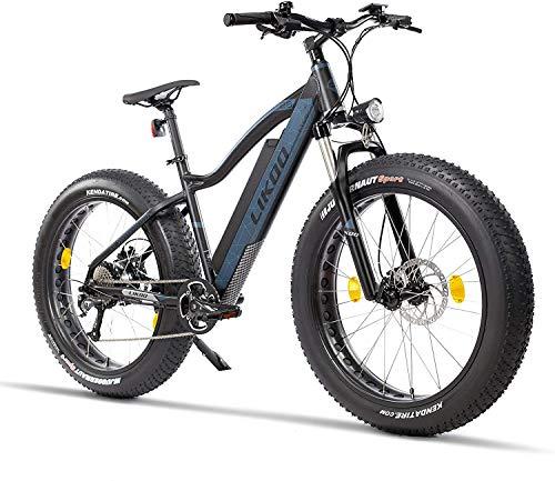 Fitifito FT26 Elektrofahrrad Fatbike E Bike Pedelec, 48V 250W Heckmotor, 48v 13ah 624wh Samsung Akku, hydraulische Bremsen, Büchel Scheinwerfer