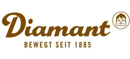 E-Bike Hersteller Diamant