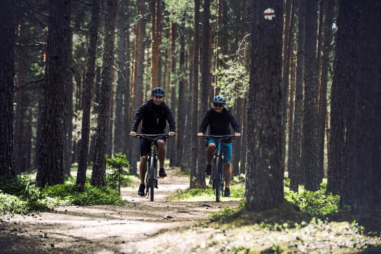 Fahrradfahren gesund